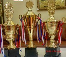 Các mẫu cúp đồng,cúp giải thưởng trưng bày cơ quan